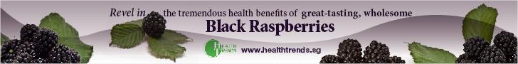 webAD-HealthTrendsBlackberry728x90.jpg